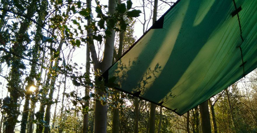 a temporary shelter in a woodland with low sun